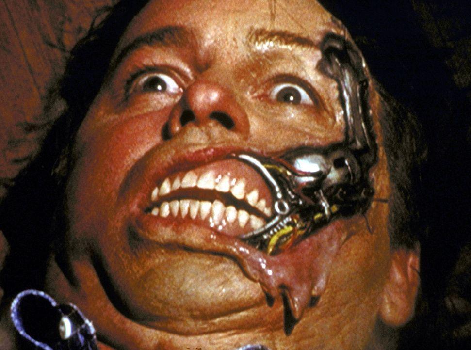Ted (John Ritter) ist nicht der freundliche Mann, der er zu sein scheint, sondern ein gefährlicher Roboter ... - Bildquelle: TM +   2000 Twentieth Century Fox Film Corporation. All Rights Reserved.