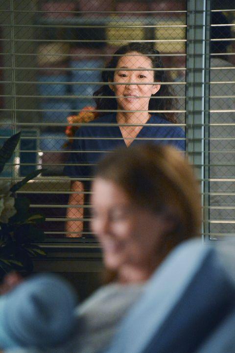 Christinas (Sandra Oh, hinten) Beziehung hängt am seidenen Faden. Sie sieht sich nicht als Mutter, weiß aber wie sehr sich Owen Kinder wünscht. M... - Bildquelle: ABC Studios