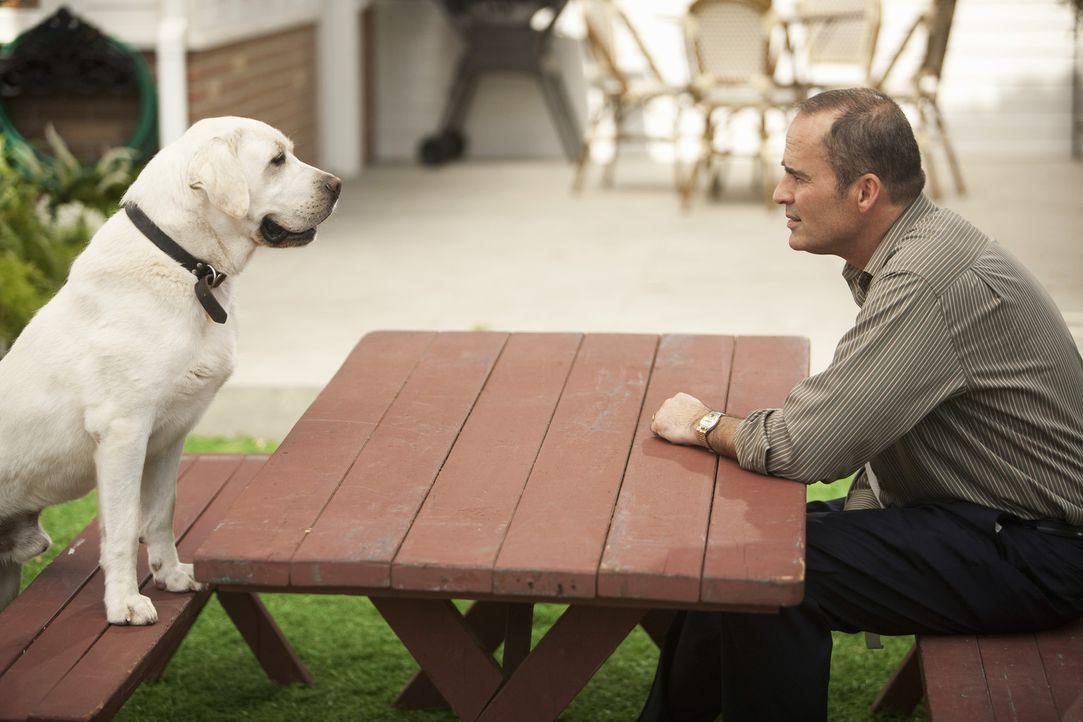 Eigentlich wollte George (Mark Derwin, r.) den Hund Moose wieder abgeben, doch inzwischen hat sich die ganze Familie an ihn gewöhnt und ins Herz ge...