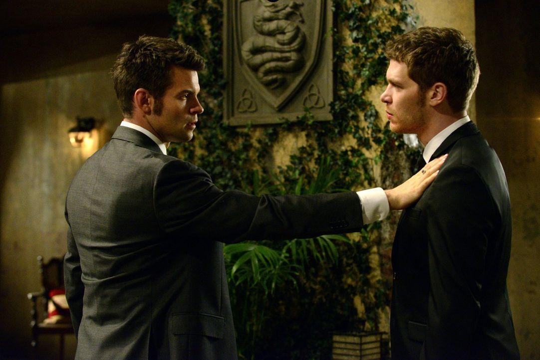 Während Klaus (Joseph Morgan, r.) vor allem sein Baby retten will, ist Elijah (Daniel Gillies, l.) das Leben von Mutter und Kind wichtig, oder? - Bildquelle: Warner Bros. Television