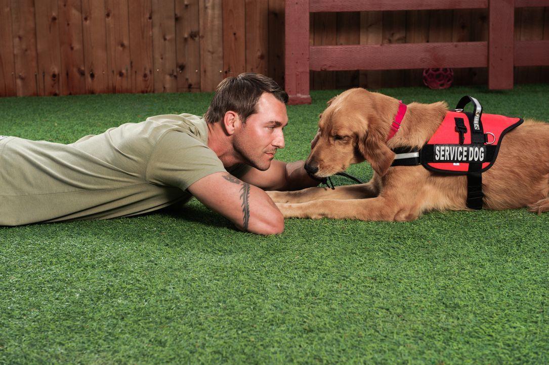 (2. Staffel) - Auf seiner Lucky Dog-Ranch stellt sich Brandon McMillan der scheinbar unmöglichen Aufgabe, längst aufgegebene Tiere zu trainieren und... - Bildquelle: 2013 Jaime Klein