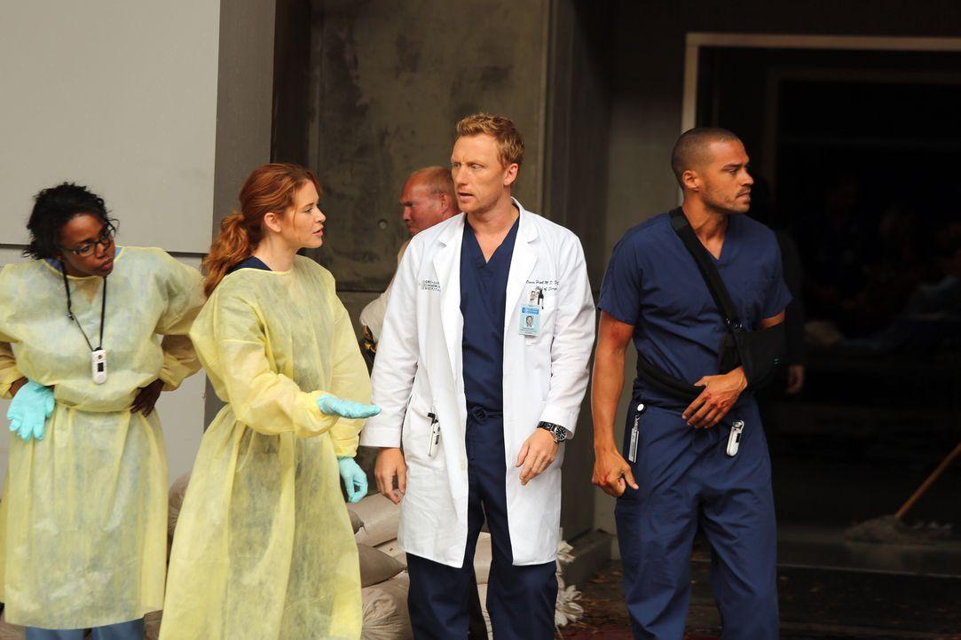 Im Hospital müssen sich die Ärzte Stephanie (Jerrika Hinton, l.), April (Sarah Drew , 2.v.l.), Owen (Kevin McKidd, 2.v.r.) und Jackson (Jesse Willia... - Bildquelle: ABC Studios