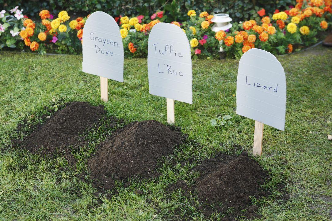 Der Tierfriedhof ... - Bildquelle: 2010 ABC INC.