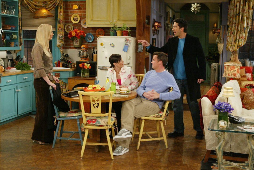 Können nicht glauben, dass Rachel nach Paris ziehen will: Phoebe (Lisa Kudrow, l.), Monica (Courteney Cox, 2.v.l.), Ross (David Schwimmer, r.) und C... - Bildquelle: 2003 Warner Brothers International Television