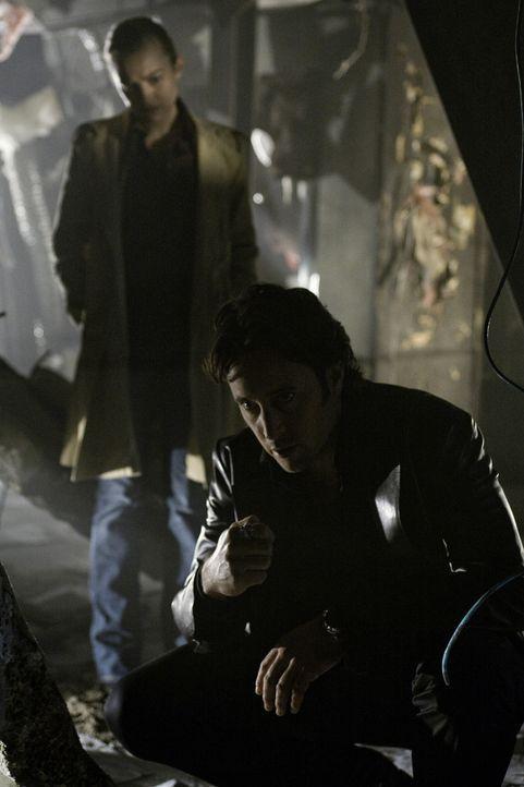 In dem zerstörten Haus von Josef stoßen Mick (Alex O'Loughlin, vorne) und Beth (Sophia Myles, hinten) auf eine heiße Spur ... - Bildquelle: Warner Brothers