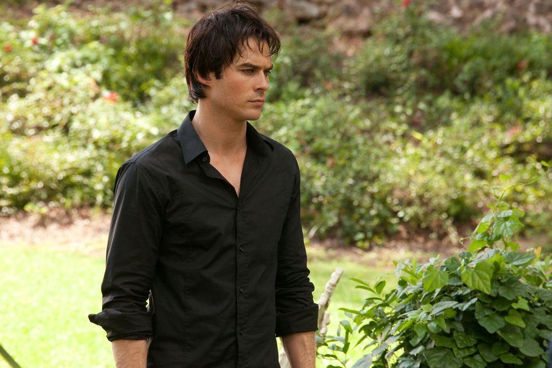 Kann nicht verstehen, dass seine angebetete Katherine nur aus Liebe zu seinen Bruder Stefan zurückgekommen ist: Damon Salvatore (Ian Somerhalder)... - Bildquelle: Warner Brothers