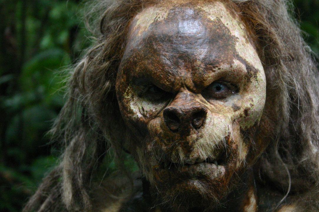 """Im Dickicht der Insel lebt ein uralter """"vergessener"""" Stamm, der sich mit Vorliebe von Menschenfleisch ernährt. Eines Tages landet nach einem Bootsu... - Bildquelle: Voltage Pictures"""