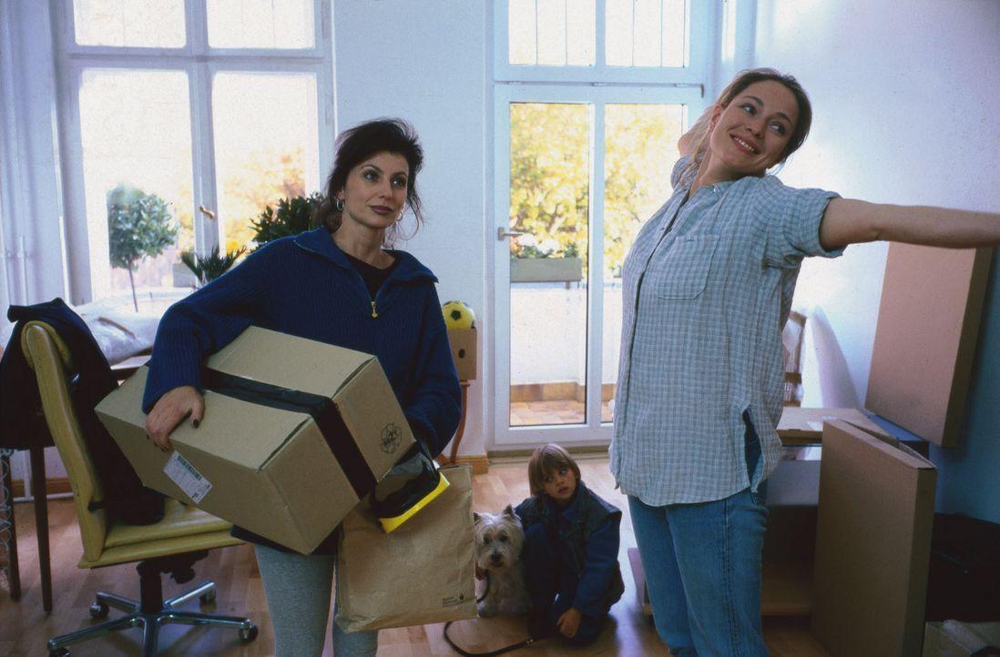 Nach der Trennung von ihrem Mann will Sarah (Katja Weitzenböck, r.) zusammen mit ihrem Sohn Beni (Dominik Janisch, M.) von vorn anfangen. Stolz zei... - Bildquelle: Sat.1