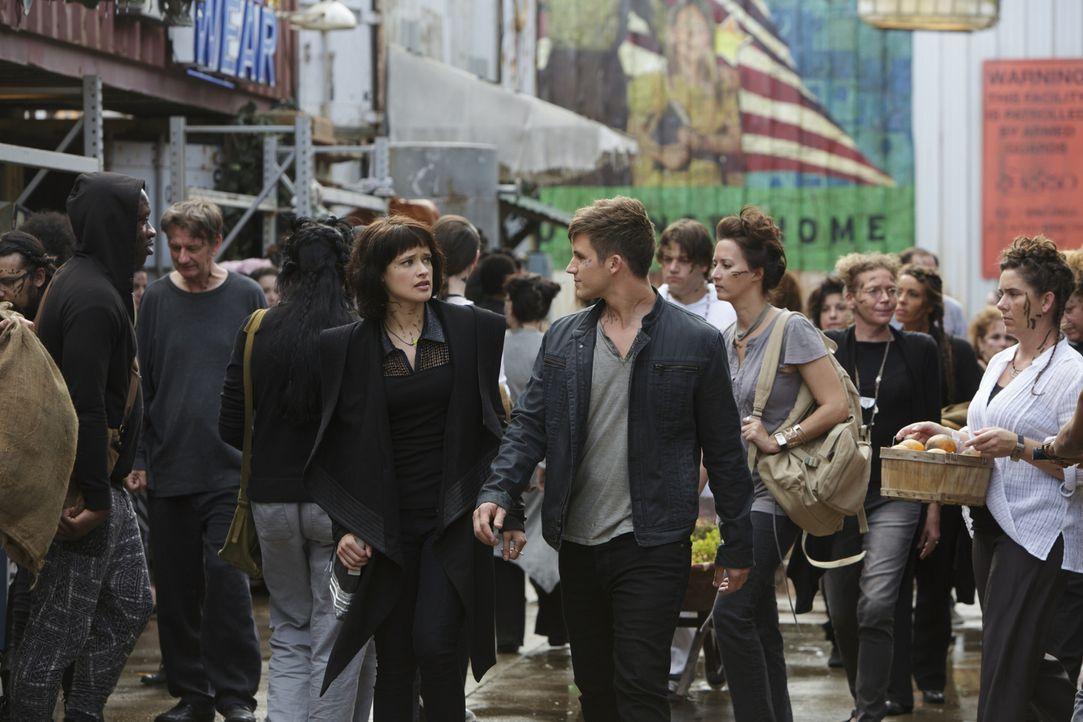 Noch ahnen Sophia (Brina Palencia, Mitte l.) und Roman (Matt Lanter, Mitte r.) nicht, welche Rolle Castor wirklich bei dem Absturz des Raumschiffes... - Bildquelle: 2014 The CW Network, LLC. All rights reserved.
