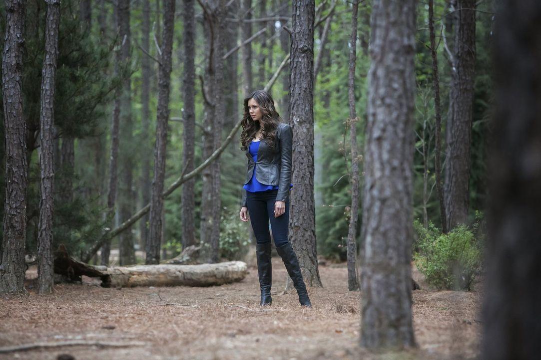 Ihr Hass auf Katherine wächst und wächst: Elena Gilbert (Nina Dobrev) - Bildquelle: Warner Brothers