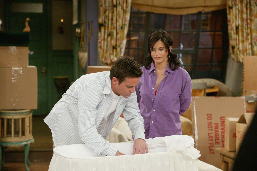 Heute ist auch der Tag des Umzugs von Chandler (Matthew Perry, l.) und Monica (Courteney Cox, r.) - ein neues Leben beginnt ... - Bildquelle: 2003 Warner Brothers International Television