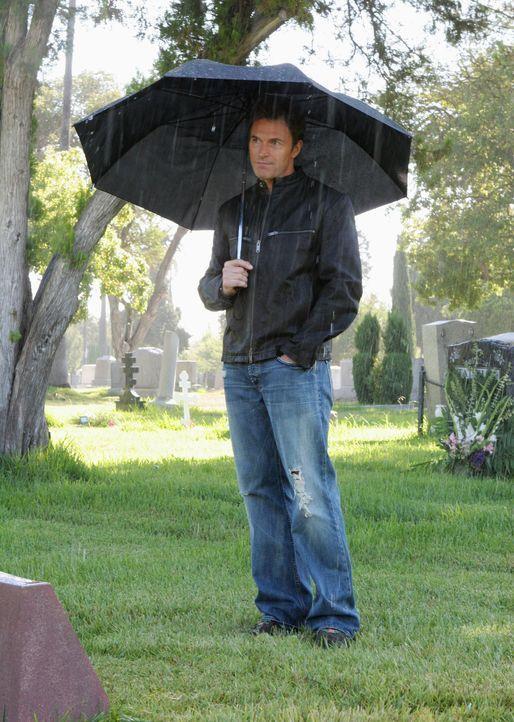Pete (Tim Daly) folgt einem Rat von Violet und besucht das Grab seiner Frau, um sie endlich loslassen zu können ... - Bildquelle: 2007 American Broadcasting Companies, Inc. All rights reserved.