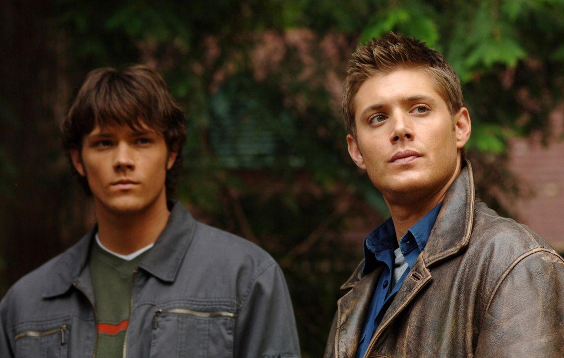 Nach und nach kommen Sam (Jared Padalecki, l.) und Dean (Jensen Ackles, r.) den mysteriösen Todesfällen auf die Spur ... - Bildquelle: Warner Bros. Television