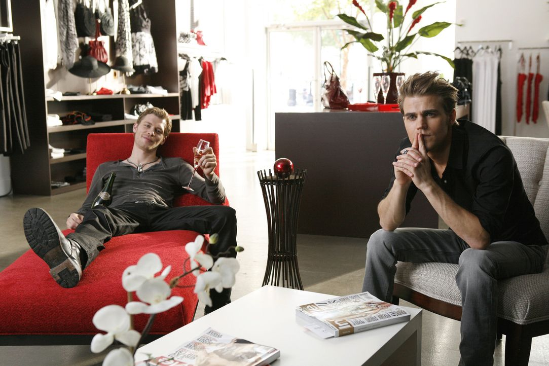 Begleiten Rebekah zum Shopping: Stefan (Paul Wesley, r.) und Klaus (Joseph Morgan, l.) ... - Bildquelle: 2011 THE CW NETWORK, LLC. ALL RIGHTS RESERVED.