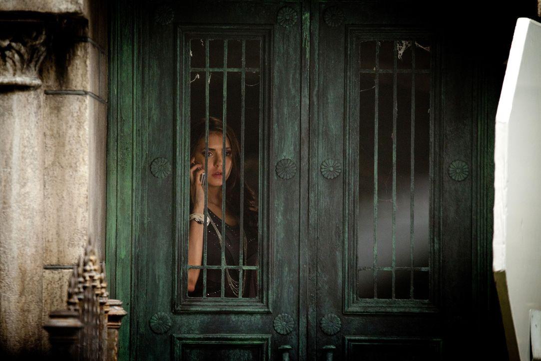 Katherine (Nina Dobrev) berichtet Damon, dass alle Versuche, Mikael wiederzubeleben, gescheitert sind ... - Bildquelle: Warner Bros. Television