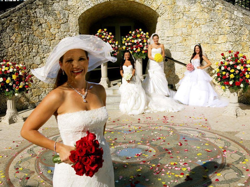 Kann Wanda (l.) die anderen Bräute Thais (2.v.l.), Rebecca (2.v.r.) und Nataly (r.) mit ihrer Hochzeit überzeugen? - Bildquelle: Richard Vagg DCL