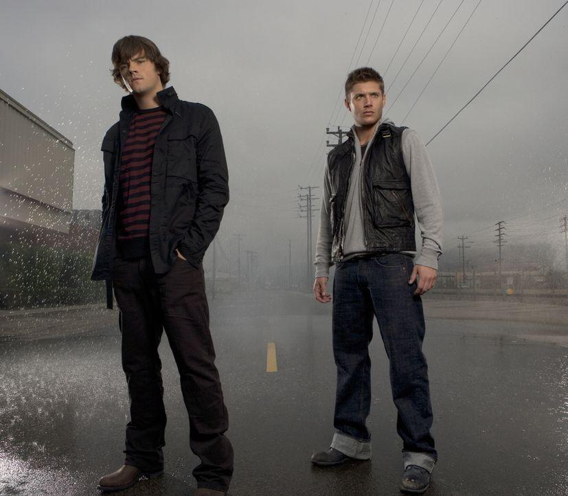(2. Staffel) - Auch nach dem Tod ihres Vaters gehen Sam (Jared Padalecki, l.) und Dean Winchester (Jensen Ackles, r.) wieder auf die Jagd nach dem B... - Bildquelle: Warner Bros. Television