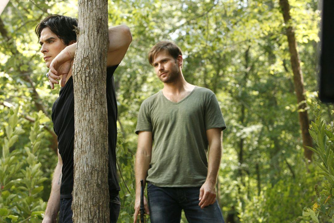 Eher widerwillig schließt sich Damon (Ian Somerhalder, l.) Alaric (Matt Davis, r.) und Elena bei der Suche nach Stefan an ... - Bildquelle: © Warner Bros. Entertainment Inc.