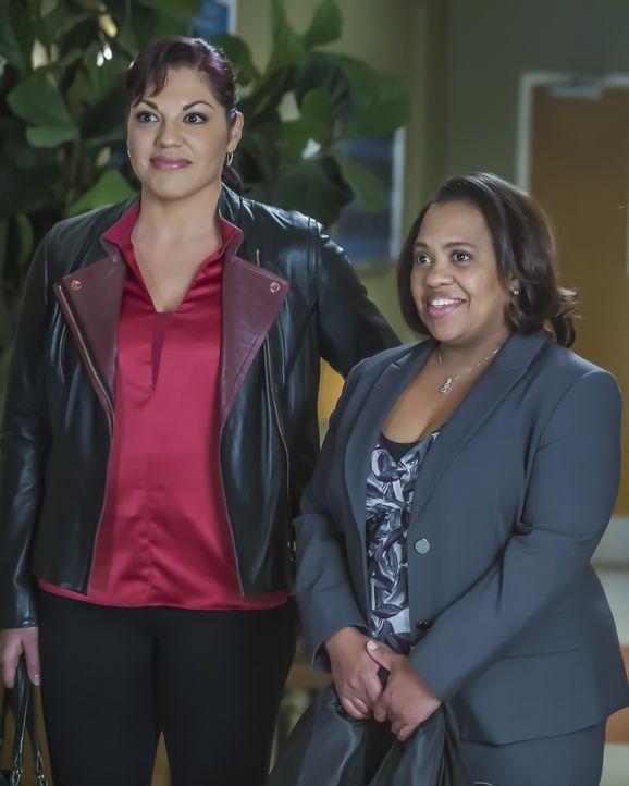 Während Andrew genervt davon ist, das Geheimnis von Maggie zu sein, wartet auf Bailey (Chandra Wilson, r.) und Callie (Sara Ramirez, l.) eine ganz b... - Bildquelle: Ron Batzdorff ABC Studios