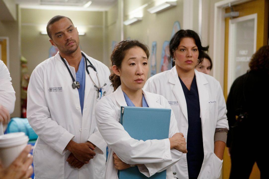 Haben einen harten Arbeitstag vor sich: Jackson (Jesse Williams, l.) und Cristina (Sandra Oh, M.) und Callie (Sara Ramirez, r.) ... - Bildquelle: Touchstone Television