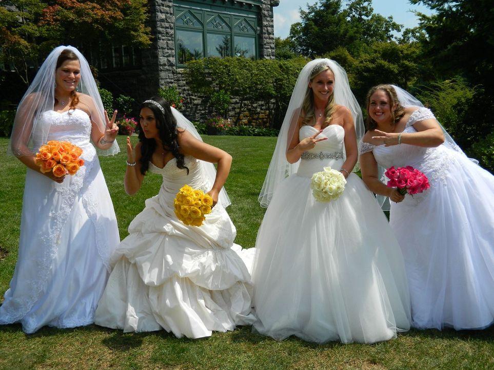 Wer wird die perfekte Hochzeit feiern: Chrystal (l.), Cheryl (2.v.l.), Lindsey (2.v.r.) oder Mandy (r.)? - Bildquelle: Richard Vagg DCL