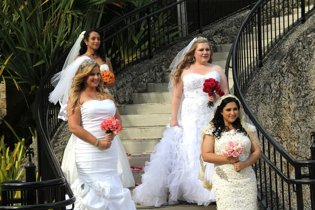 Kämpfen um den Titel und eine atemberaubende Hochzeitsreise: Kimberly (vorne l.), Danays (hinten l.), Irina (hinten r.) und Geysell (vorne r.) ... - Bildquelle: Richard Vagg DCL