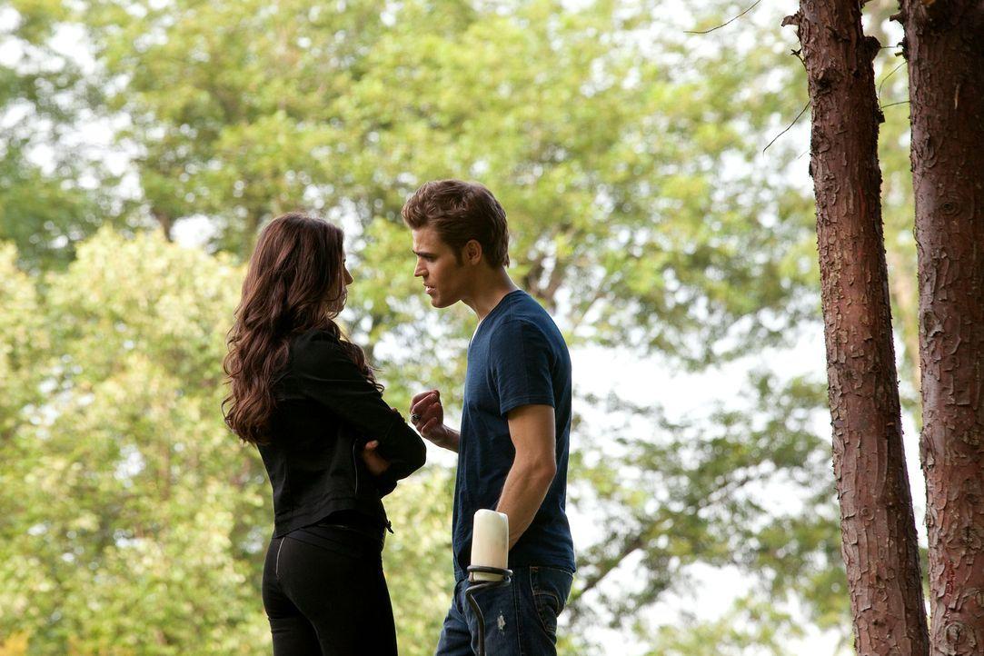 Stefan (Paul Wesley, r.) lässt alle Komplimente seiner manipualtiven Exfreundin Katherine (Nina Dobrev, l.) an sich abprallen, dass diese nur schlec... - Bildquelle: Warner Brothers