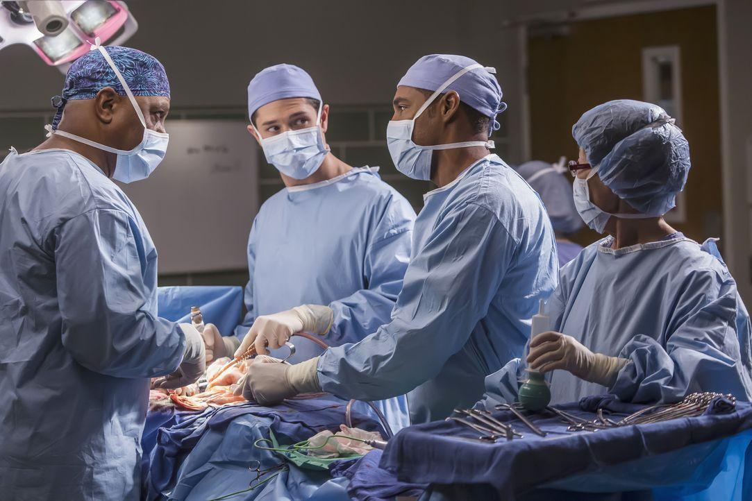 Im Einsatz um Leben zu retten: Webber (James Pickens Jr., l.), Mitchell (Joe Dinicol, 2.v.l.) und Ben (Jason George, 2.v.r.) ... - Bildquelle: Ron Batzdorff ABC Studios