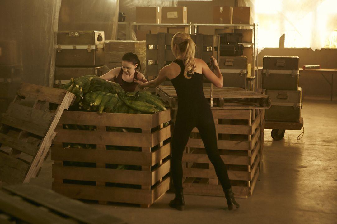 Können Savannah (Kiara Clasco, l.) und Elena (Laura Vandervoort, r.) gemeinsam fliehen? - Bildquelle: 2015 She-Wolf Season 2 Productions Inc.