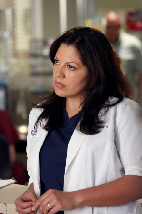 Rückblick: Callie (Sara Ramirez) ahnt nicht, was noch auf sie zukommen wird ... - Bildquelle: ABC Studios
