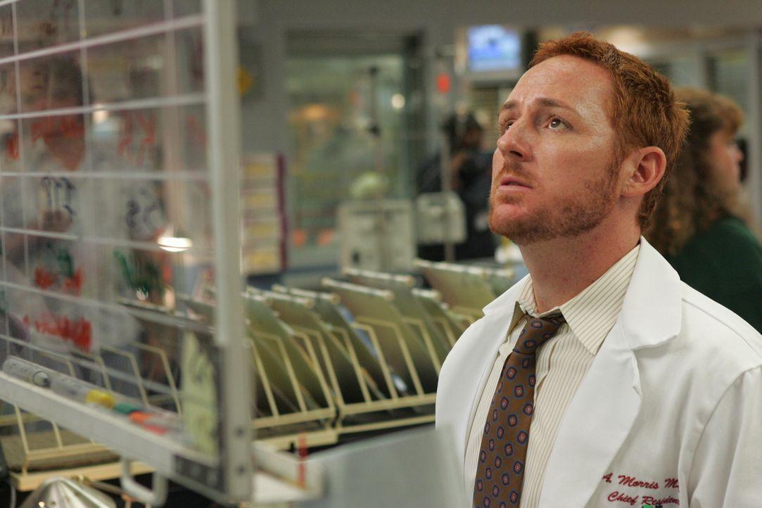 Dr. Morris (Scott Grimes) versucht sich einen Überblick zu schaffen ... - Bildquelle: Warner Bros. Television