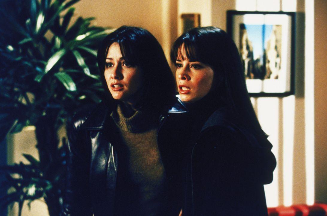 Piper (Holly Marie Combs, r.) und Prue (Shannen Doherty) sind in Gefahr ... - Bildquelle: Paramount Pictures
