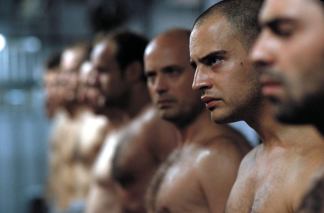 Immer wieder provoziert Tarek (Moritz Bleibtreu, 2.v.r.) die Wärter. Als sein Zellennachbar Steinhoff (Christian Berkel, 3.v.r.) ihn vor den Konsequ... - Bildquelle: SENATOR FILM Alle Rechte vorbehalten