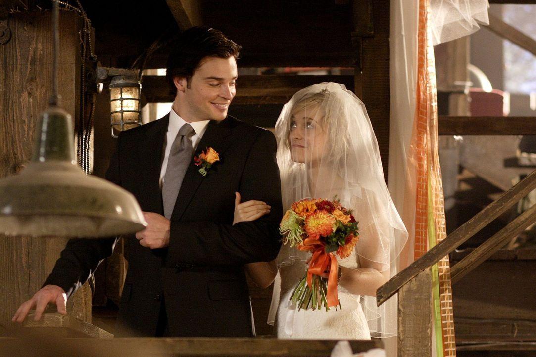 Da er Chloe (Allison Mack, r.) unbedingt persönlich zum Traualtar führen will, lehnt Clark (Tom Welling, l.) es ab, mit Oliver Lex zu suchen ... - Bildquelle: Warner Bros.