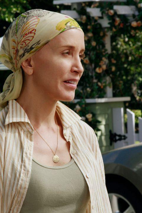 Da Katherine auch das Baumhaus der Scavos entfernen lassen möchte, entschließt sich Lynette (Felicity Huffman), gegen Katherine anzutreten ... - Bildquelle: ABC Studios