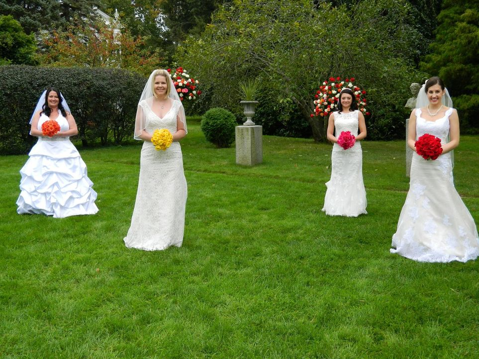 Kämpfen um den Titel und eine atemberaubende Hochzeitsreise: Jessica (l.), Wendy (2.v.l.), Nicole (2.v.r.) und Lynette (r.) ... - Bildquelle: Richard Vagg DCL