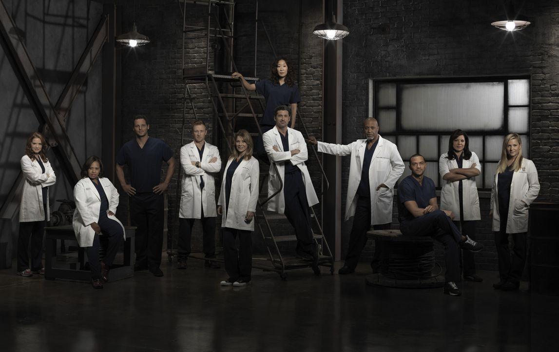 (9. Staffel) - Grey's Anatomy: April (Sarah Drew, l.), Callie (Sara Ramirez, 2.v.r.), Alex (Justin Chambers, 3.v.l.), Arizona (Jessica Capshaw, r.),... - Bildquelle: ABC Studios