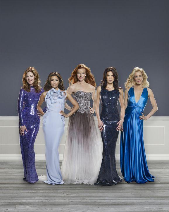 (6. Staffel) - Die Dramen in der Wisteria Lane nehmen kein Ende: Lynette (Felicity Huffman, r.), Bree (Marcia Cross, M.), Gabrielle (Eva Longoria, 2... - Bildquelle: ABC Studios