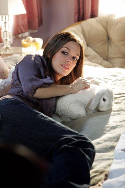 Schwanger?: Summer (Rachel Bilson) - Bildquelle: Warner Bros. Television