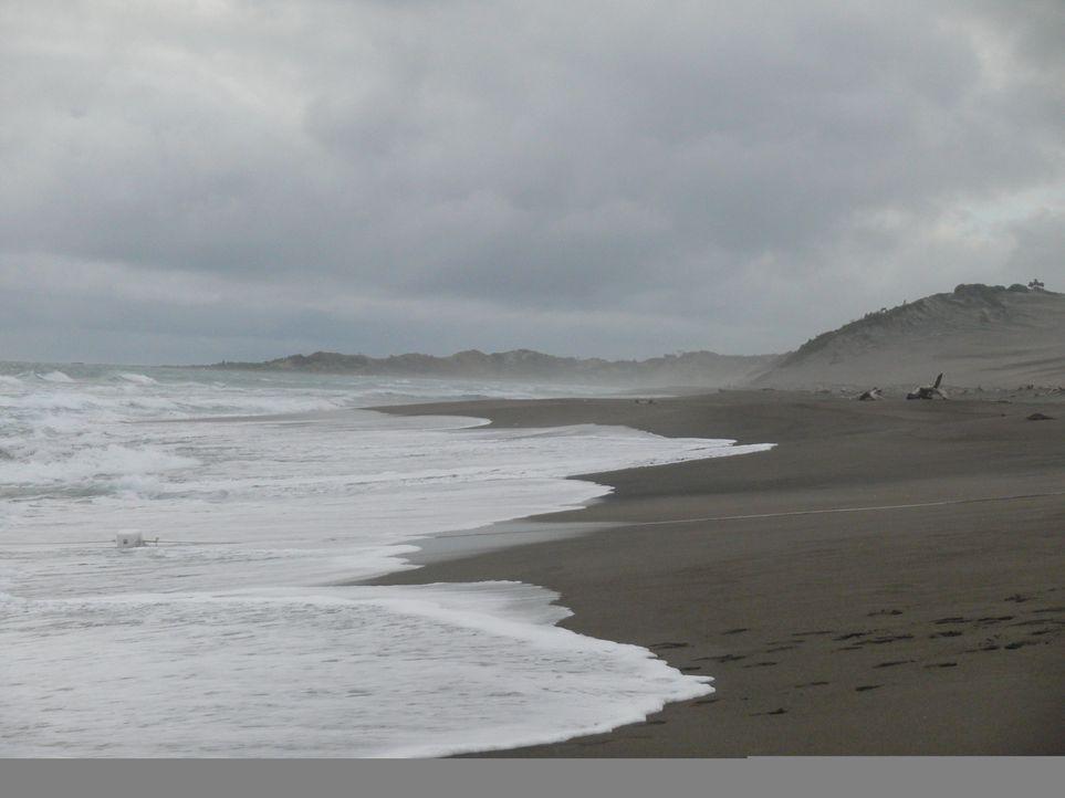 Es gibt kein Entkommen! Mitten im Ozean liegt eine Insel, auf der schwierige Jugendliche mit Hilfe drastischer Strafen erzogen werden sollen ... - Bildquelle: Chris Large