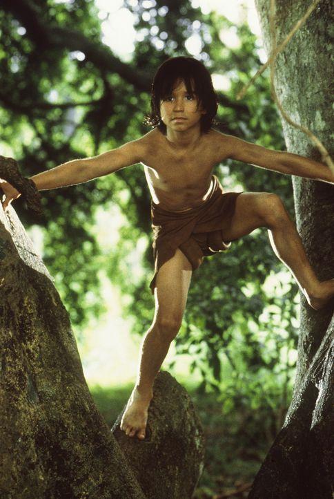 Mowgli (James Williams) ist in seinem Element ... - Bildquelle: MDP WORLDWIDE