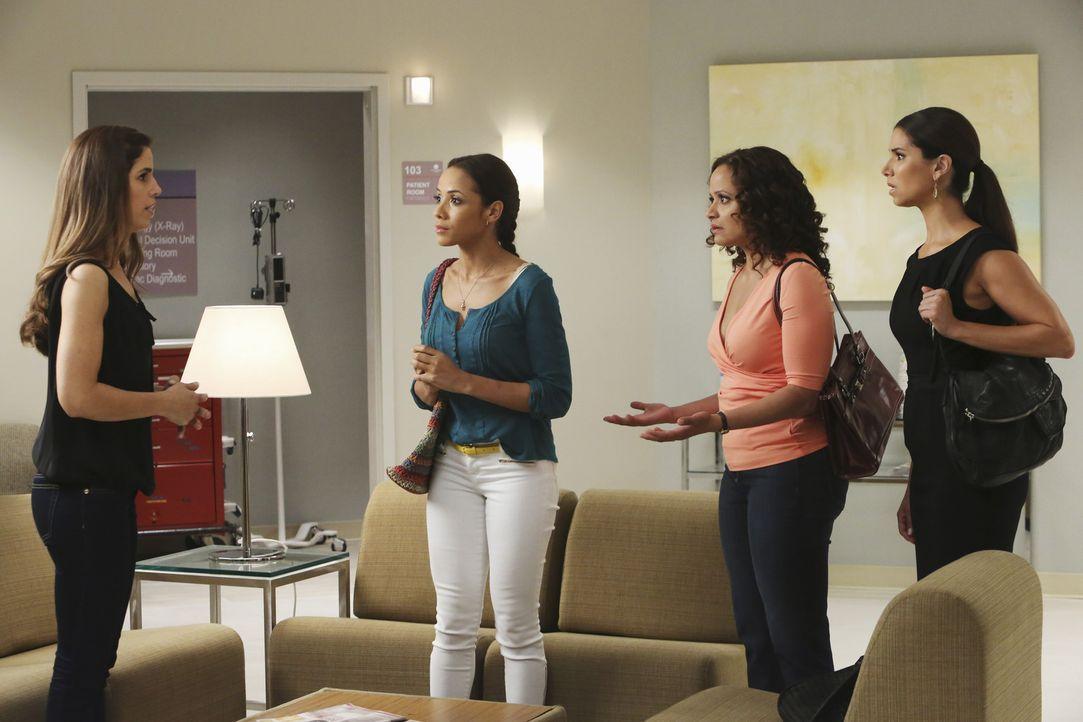 Marisol (Ana Ortiz, l.) arrangiert mit Hilfe ihrer Freundinnen Rosie (Dania Ramirez, 2.v.l.), Carmen (Roselyn Sanchez, r.) und Zoila (Judy Reyes, 2.... - Bildquelle: ABC Studios