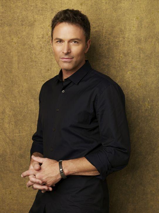 (3. Staffel) - Kennt die Schattenseiten des Lebens: Pete (Tim Daly) ... - Bildquelle: ABC Studios