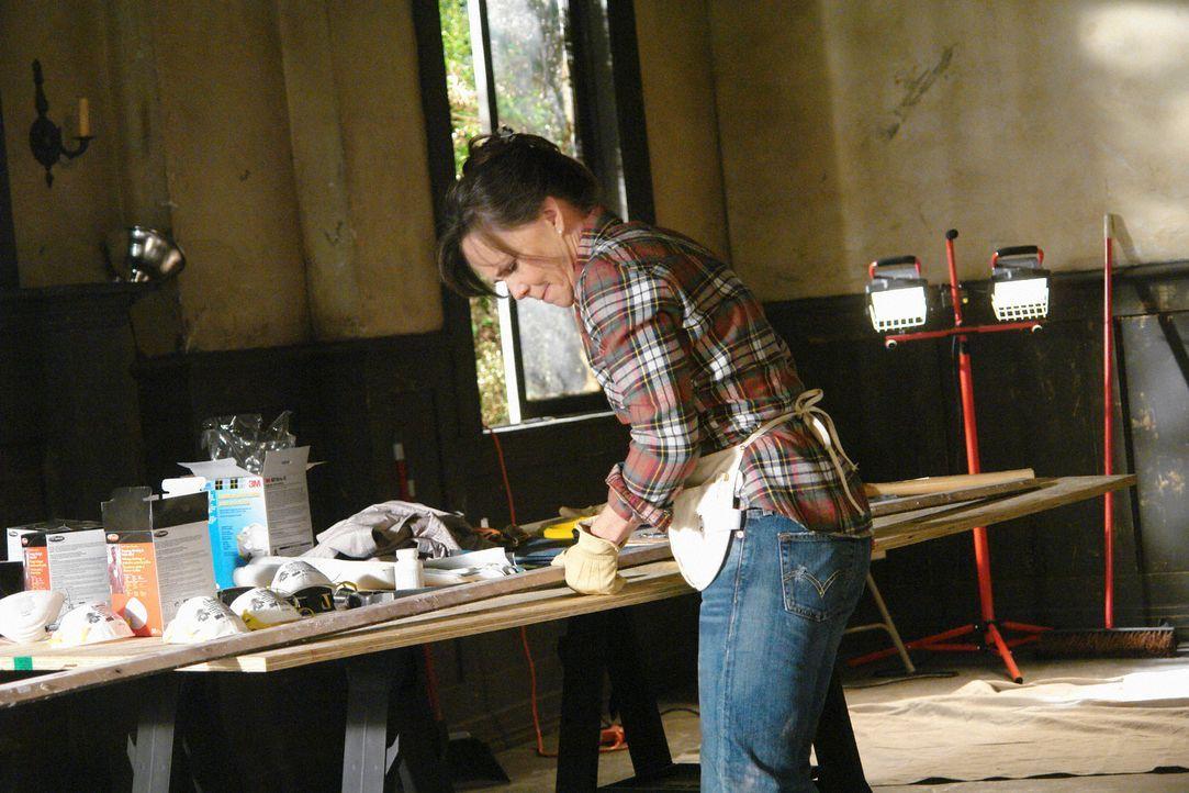 Arbeitet wie besessen an der Hausrenovierung: Nora (Sally Field) ... - Bildquelle: 2008 ABC INC.