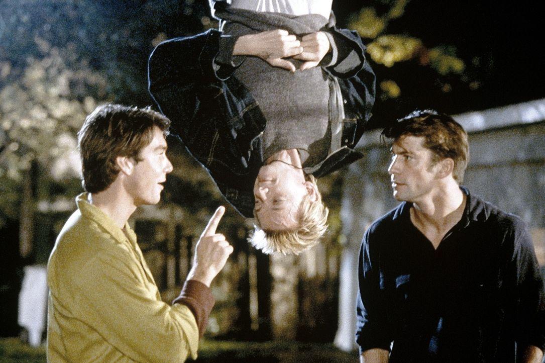 Immer wieder gerät Dizzy (D.J. Qualls, M.) ins Visier der Zwillinge(Jerry, l. und Charlie O'Donnell, r.) ... - Bildquelle: Senator Film