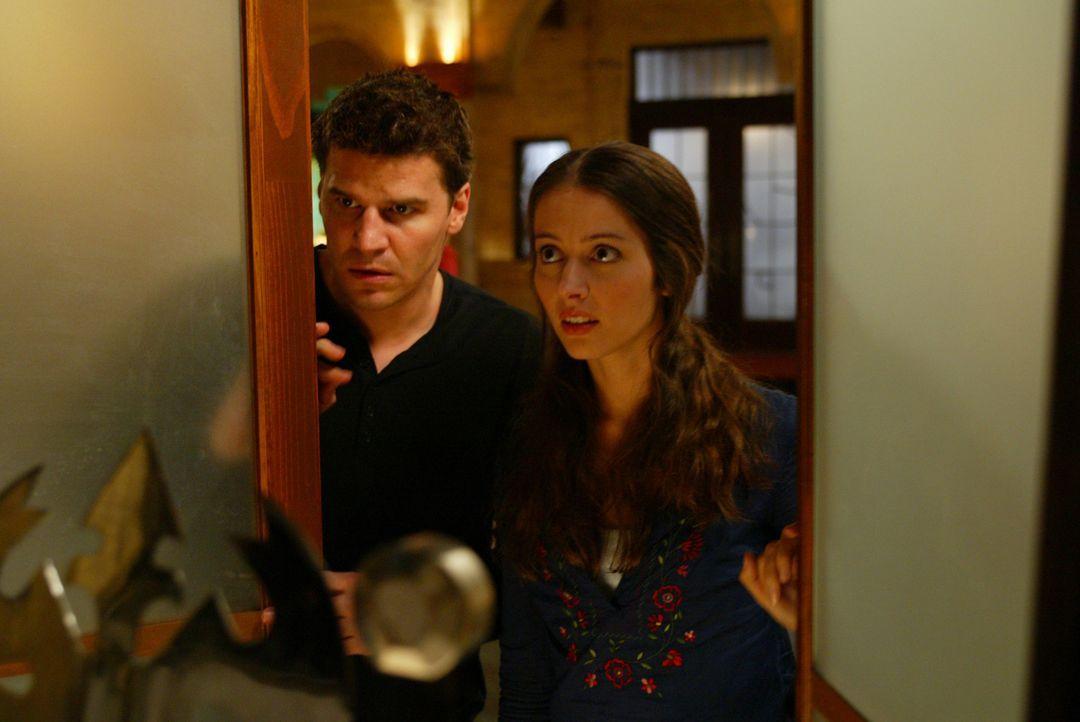 Lorne bringt eine Flasche mit ins Hotel, die einen Erinnerungszauber enthält, mit dessen Hilfe Cordelias Amnesie geheilt werden kann. Fred (Amy Acke... - Bildquelle: The WB Television Network