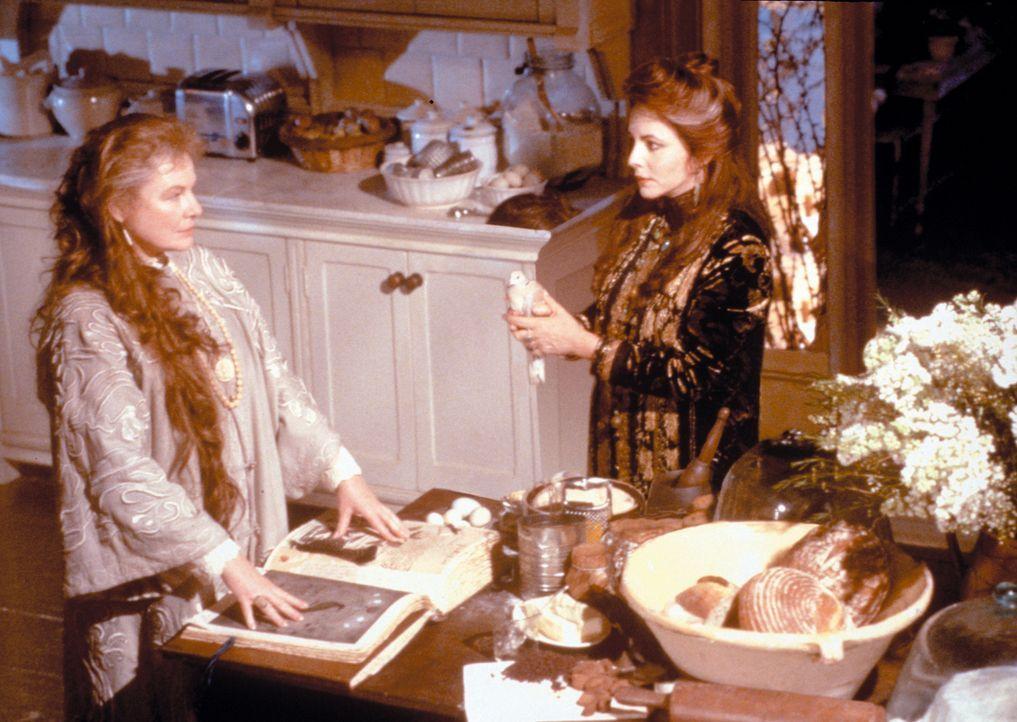 Sally und Gillian sind ziemlich verhexte Schwestern. Als Töchter einer alten Hexenfamilie wachsen sie im Haus ihrer beiden Tanten (Dianne Wiest r. u... - Bildquelle: Warner Brothers