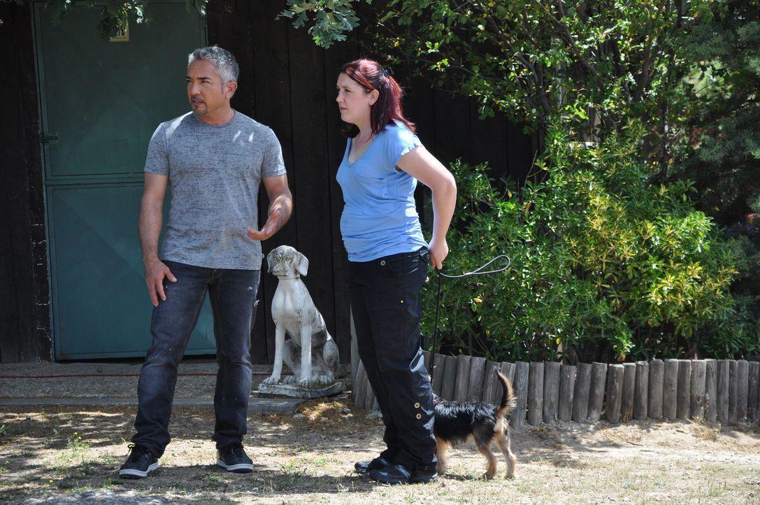 In Spanien möchten Cesar Millan (l.) und Gemma Collins (r.) der kleinen, aber aggressiven Hündin Dora helfen, endlich eine Familie zu finden ... - Bildquelle: Belén Ruiz Lanzas 360 Powwow, LLC / Belén Ruiz Lanzas