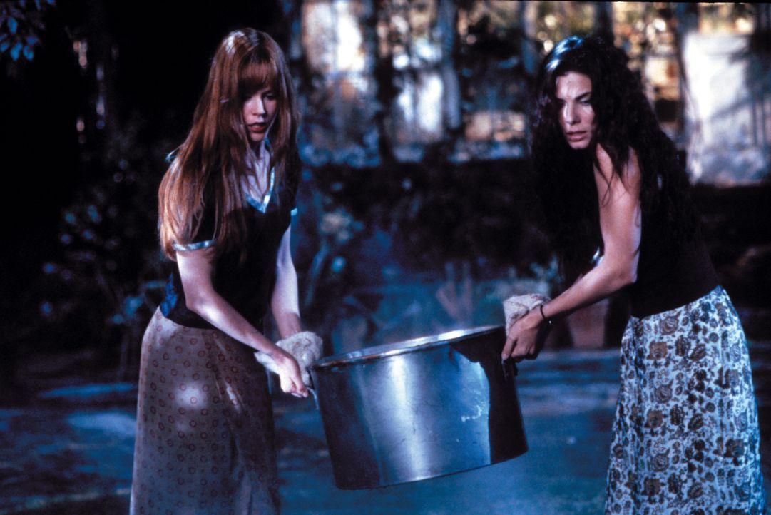 Die Schwestern Sally (Sandra Bullock, r.) und Gillian Owens (Nicole Kidman, l.) sind beide von klein auf mit weißer Magie aufgewachsen und leben sei... - Bildquelle: Warner Brothers