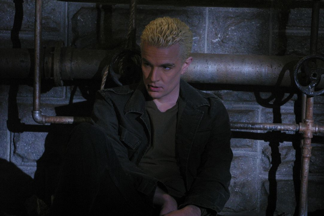 Giles nimmt fälschlicher Weise an, dass die Liebe zu Spike (James Marsters), Buffys Fähigkeit zu Entscheidungen vernebelt ... - Bildquelle: TM +   Twentieth Century Fox Film Corporation. All Rights Reserved.